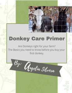 Donkey care book