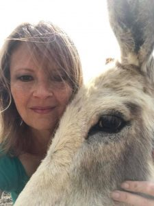 how do donkeys help humans