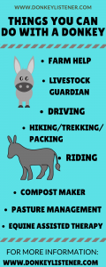 What are donkeys used for