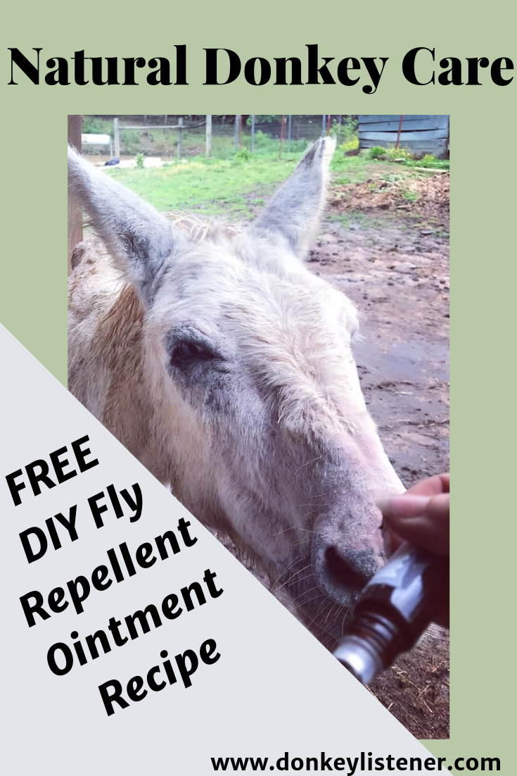 Fly Repellent Ointment for Equine [Free