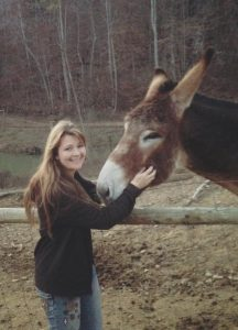 Donkey Behavior and how donkeys show affection