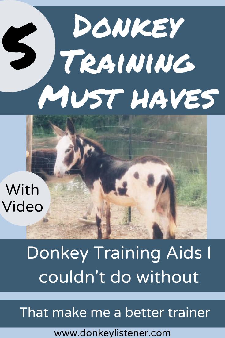 Donkey training information.