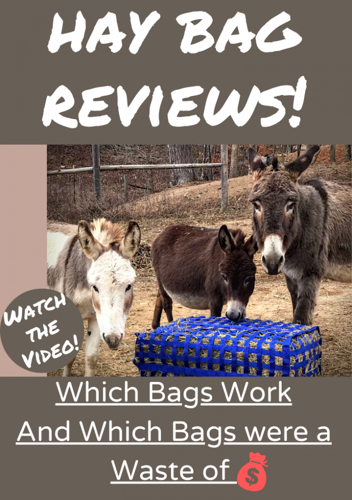 Hay Bags {The best and the worst!}