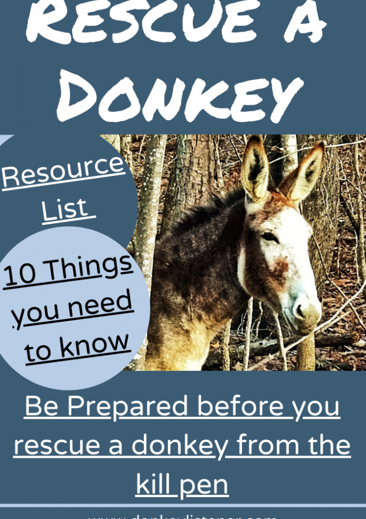 Rescue a Donkey {Part 1} Be Prepared