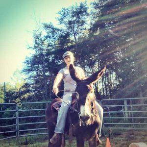 training donkeys