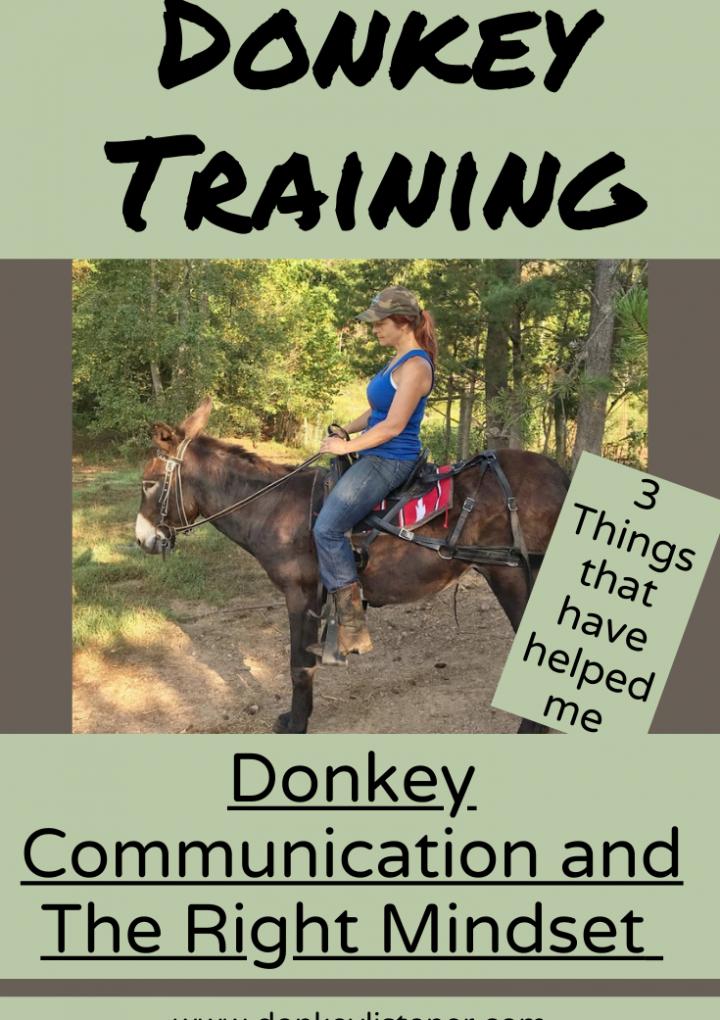 Mindset for Training a Donkey