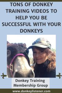 Donkey training videos