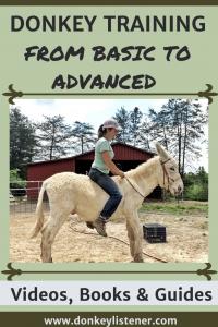 Training donkeys from basic to advanced. Liberty donkey and donkey agility
