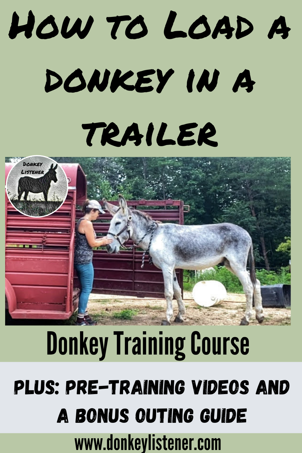 how to transport a donkey